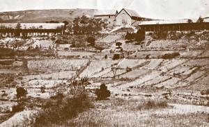 Ambahivoraka za czasów ojca Beyzyma